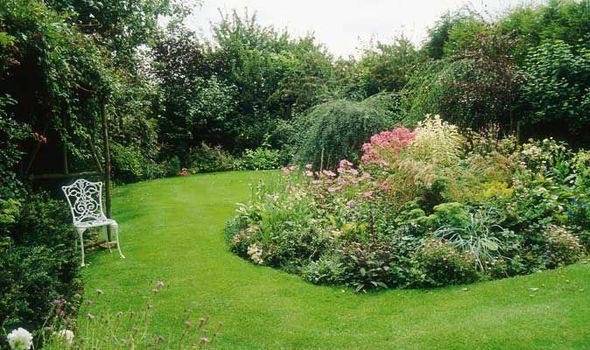 Tuinverzorging Fieten Hoogeveen, uw specialist.