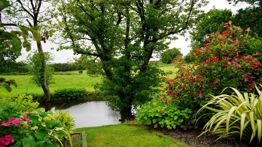 Het is heerlijk als u in de tuin kunt ontspannen, maar als de tuin wat groter is, kost het tuinonderhoud ook veel tijd. Een hovenier helpt u.